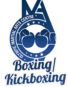Adults Boxing